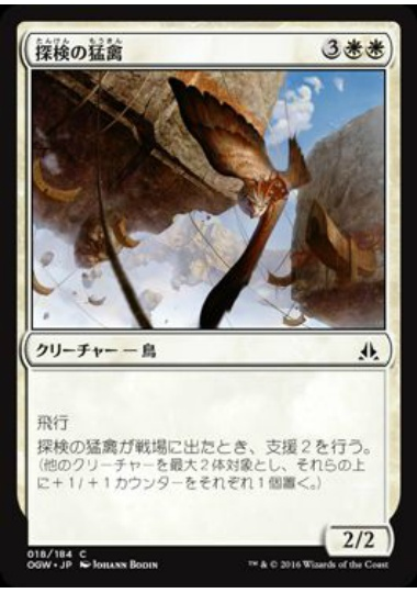 【OGW】 Expedition Raptor/探検の猛禽 (日) No.018
